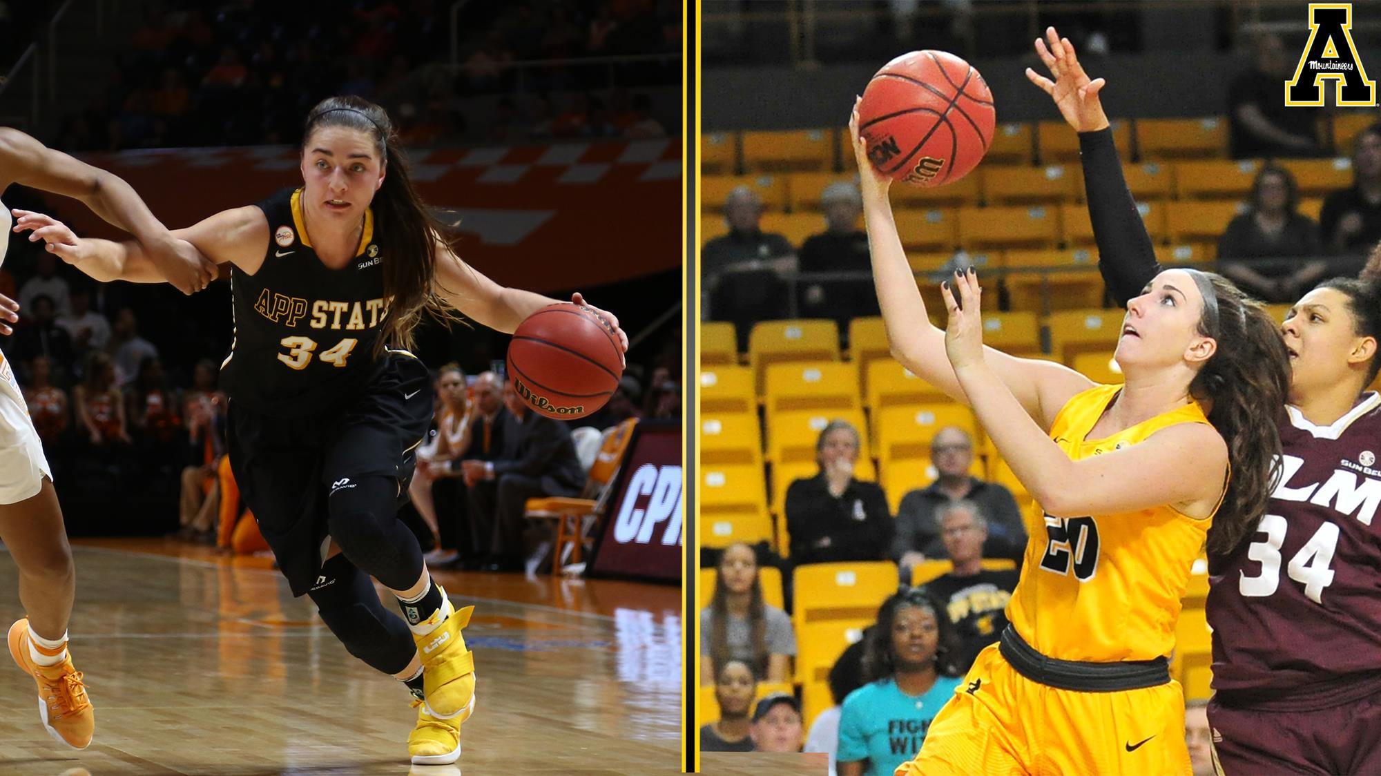 Women S College Basketball Bandys Story Named App State Captain Hobbs Daily Report Covering Catawba Valley Sports